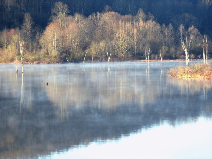 Morning mist on Stone Coal Lake