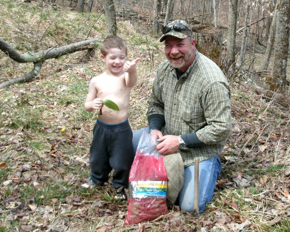 Ramps(wild Leeks) a West Virginia Tradtional Wild Food (1/6)