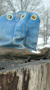 Pair of boots forgotten after rodeo and left on a stump