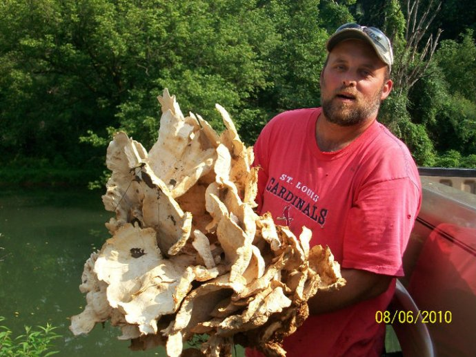 Mark Metzger with huge chicken of the woods
