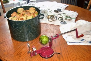 apple peeler, corer and slicer