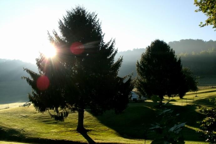 Morning fog on the farm in Jane Lew, West Virginia