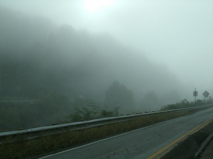 Fog blocking sight of a road
