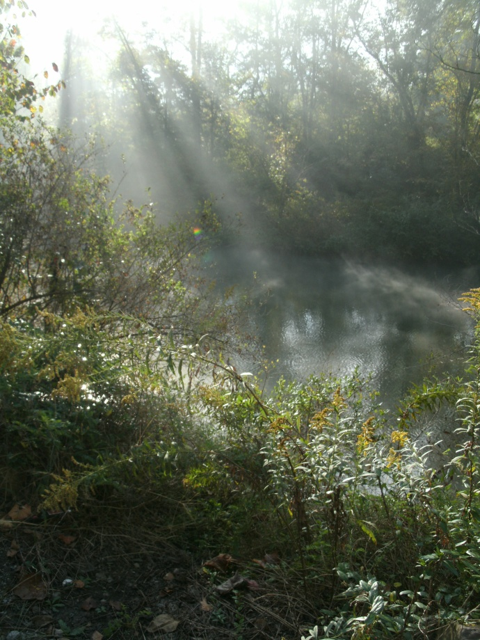 Sunrays and Steamy fog of the West Fork River Weston, West Virginia