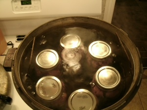 canning jars in pressure canner with water