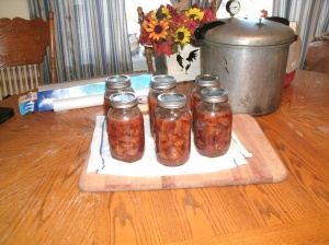 canned deer meat and my hard working canner