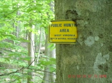Hunting area sign grown into tree