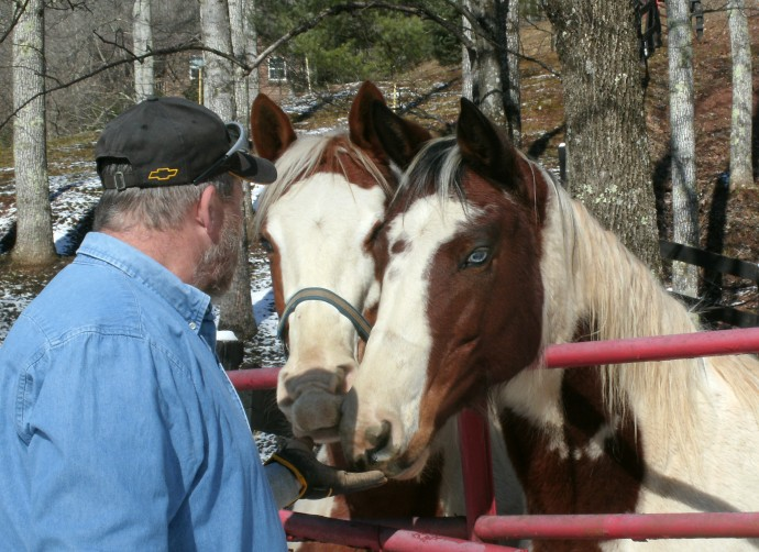 Tom Powers working with horses at Cross Creek Farm