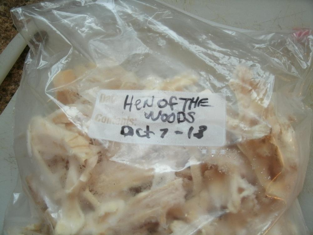 Wild Mushroom ( Hen of the Woods)( Chicken Mushroom) Penne Pasta (3/6)