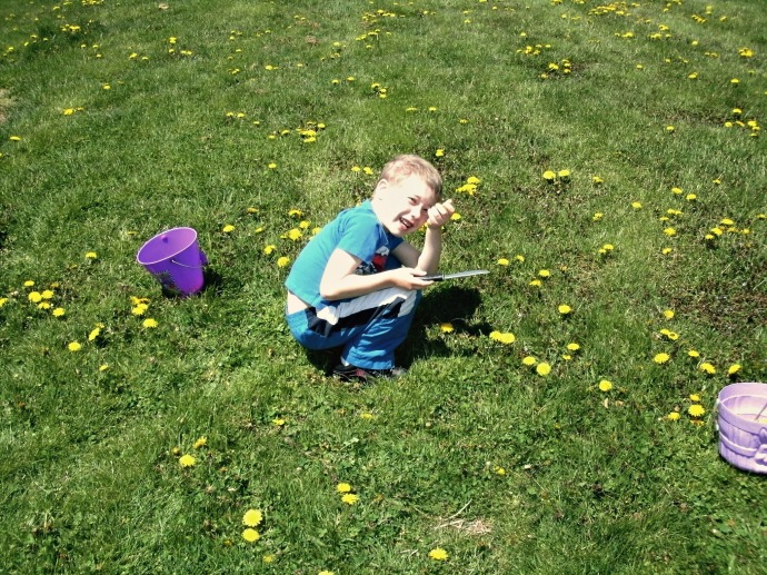 Christopher picking Dandelions with a plastic kife