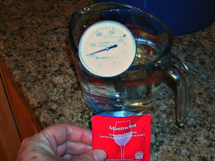 warm water with thermometer and yeast