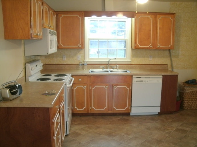 Kitchen with 1964 cabinets