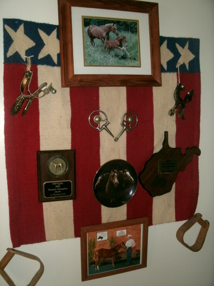 Horse decor with trophies and photos