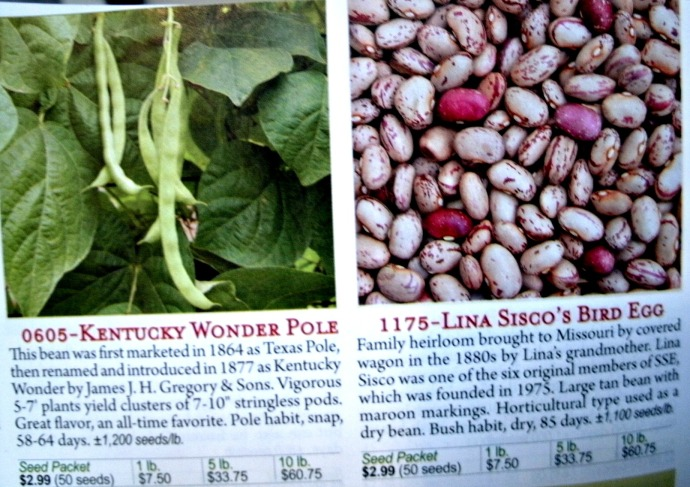 Bean pages of Seed Savers Catalog