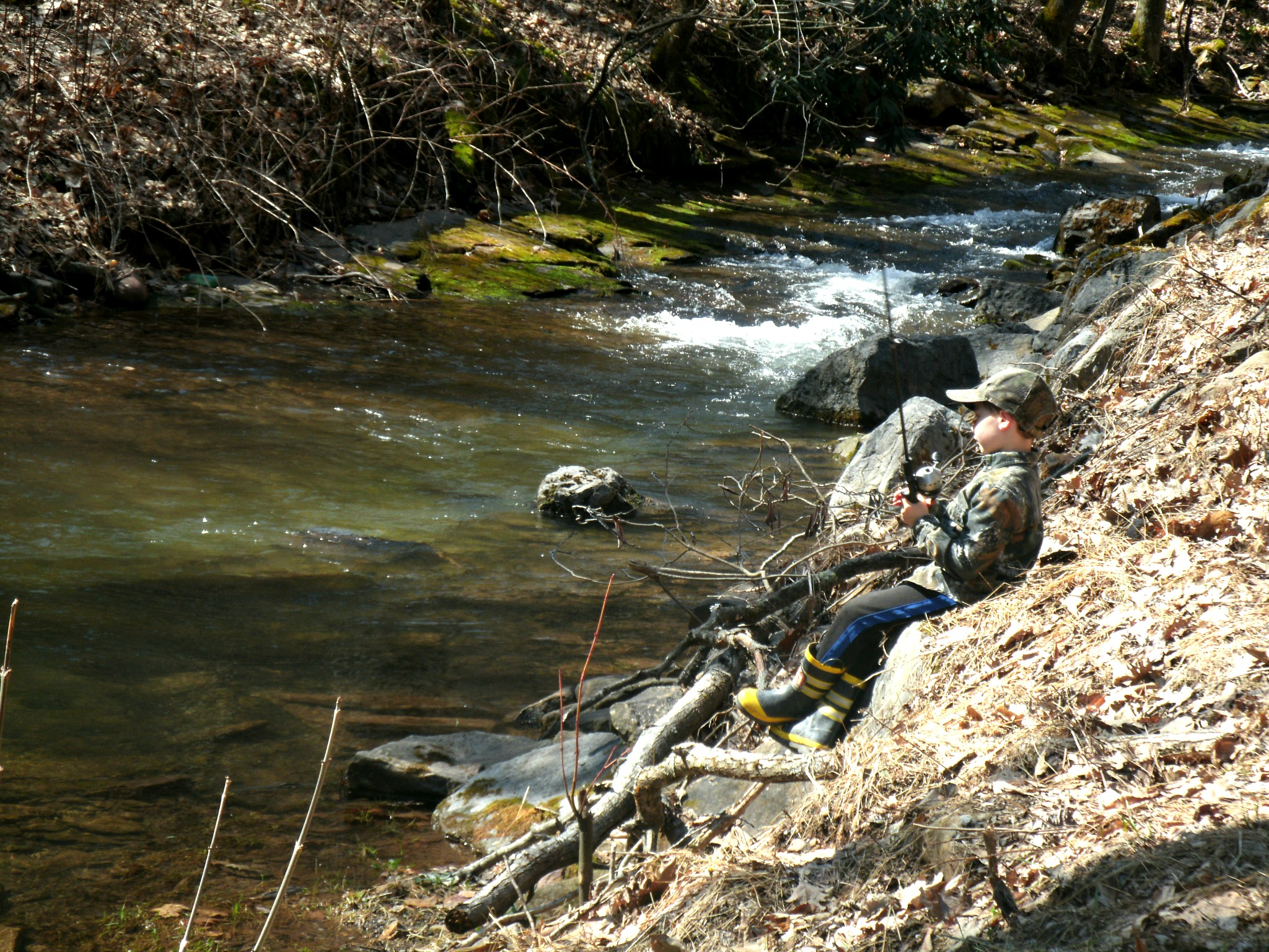 Spring time in west virginia means trout and a trip to for Trout fishing in wv