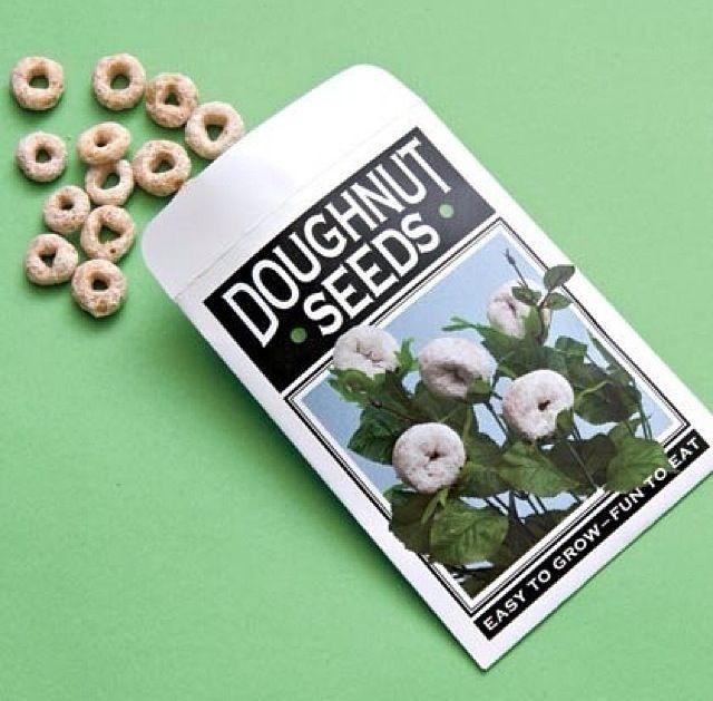 Doughnut seeds