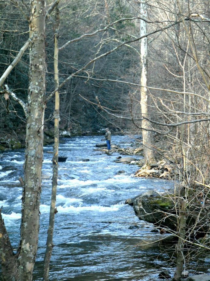 Tom fishing in a stream in Pendleton County West Virginia