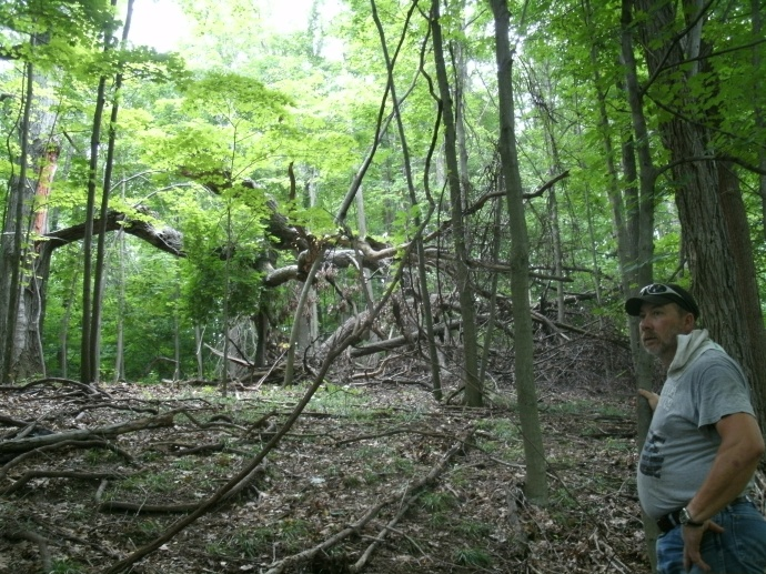 Tom in front of broken tree covered in grape vine, Lewis County West Virginia