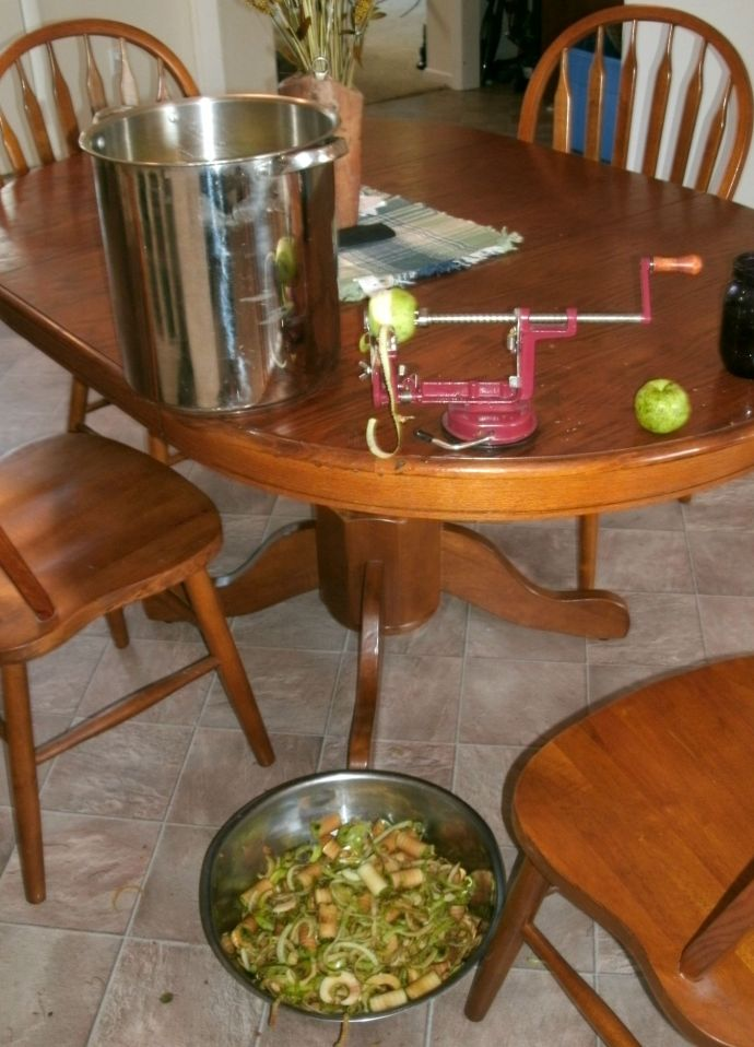 collecting apple peals into bowl for vinegar making