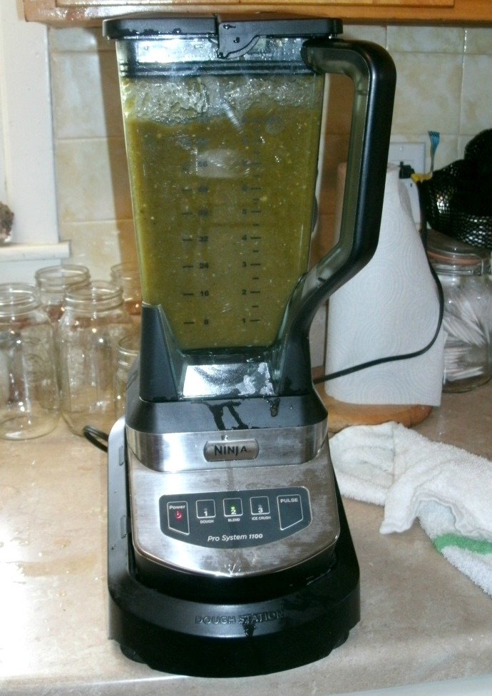 Blender full of green Chili