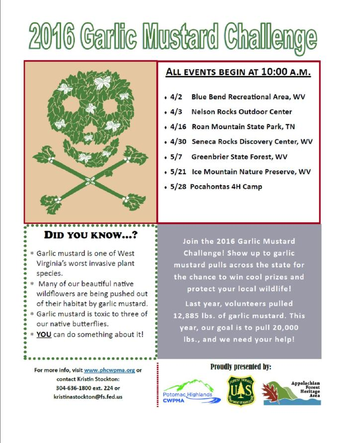 Garlic Mustard Pull flyer