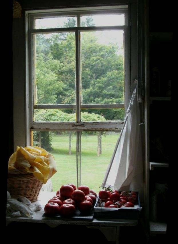 Hutte Hause window