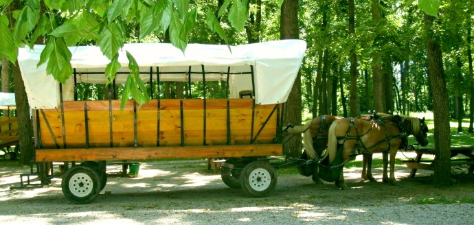 Horse drawn wagon ride Blennerhassett Island