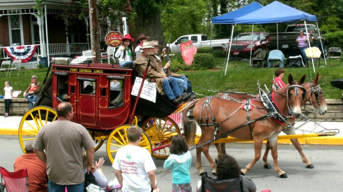 Mules pulling a mini pony express stagecoach
