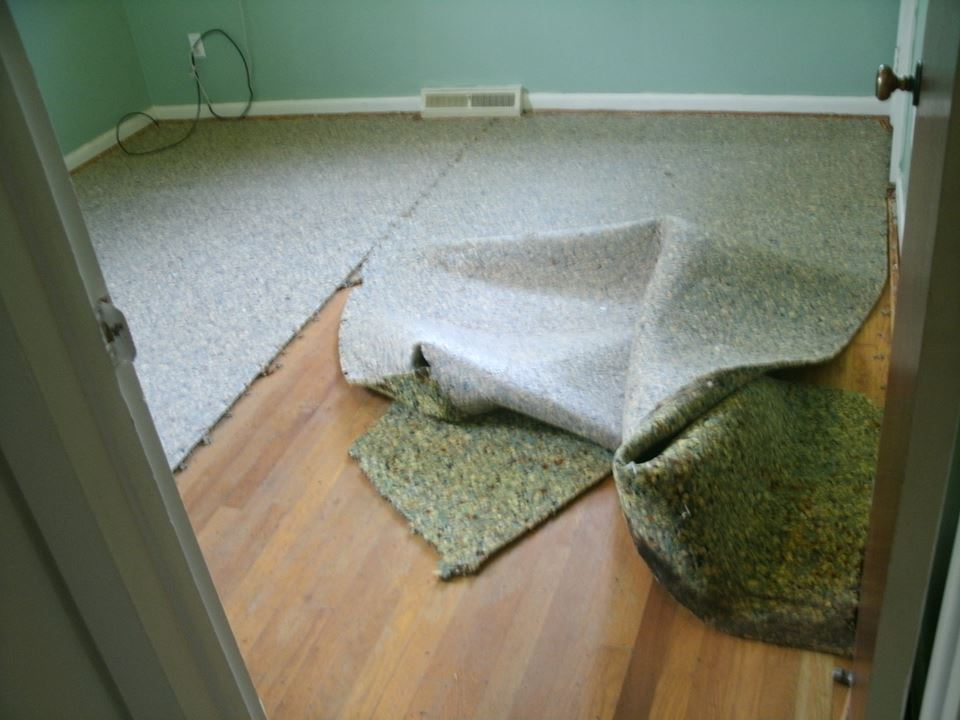 tearing out old carpet