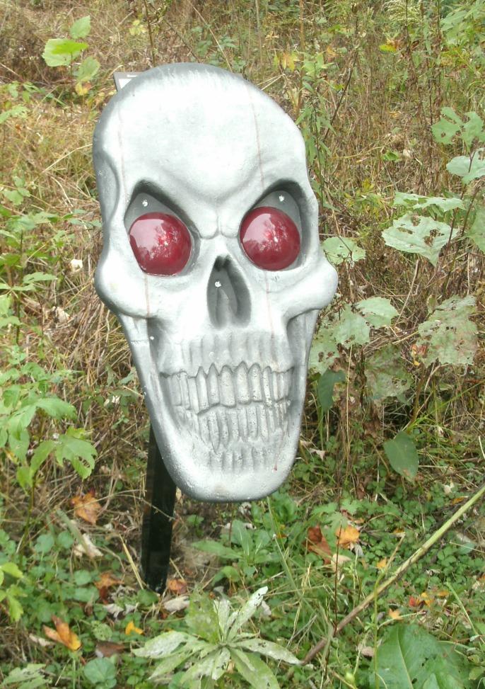 Red eyed skull