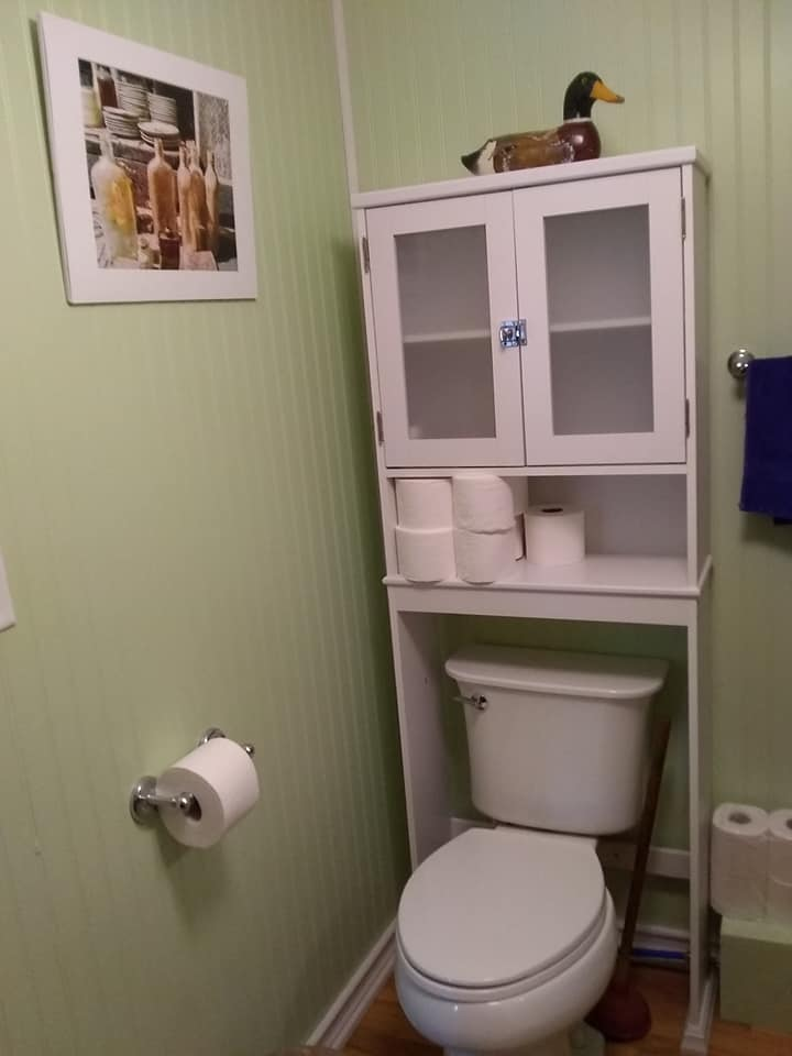 completed bathroom project toilet veiw