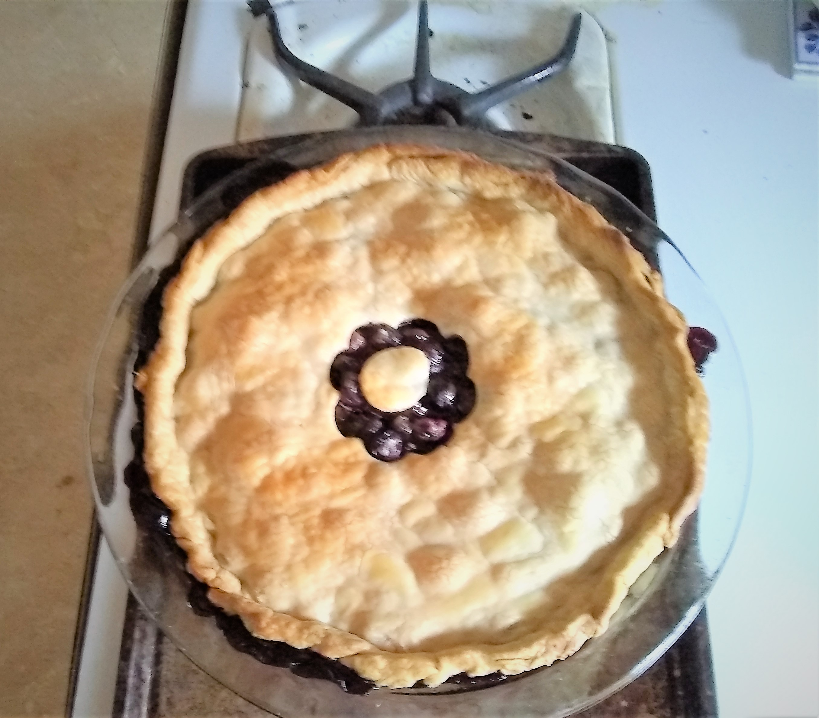 blueberry pie just out of the oven