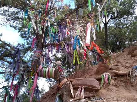 Prayer ribbons on a tree at Linwood Cemetery where Doc Holliday and Kid Cassidy are laid to rest.